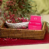 ghk-blog-scentsy-Pink-Pepper-200